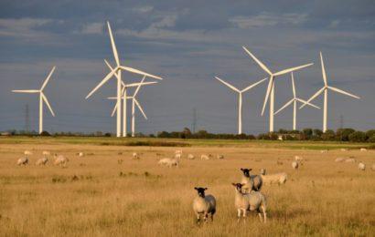 Le Mali abrite un sommet sur les énergies renouvelables du 28 au 30 septembre 2017