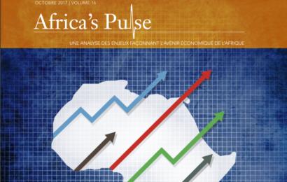 La croissance de l'Afrique subsaharienne estimée à 2,4% en 2017