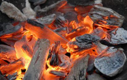 Cameroun: l'utilisation du charbon de bois a emporté 18500 hectares de forêts en 2015