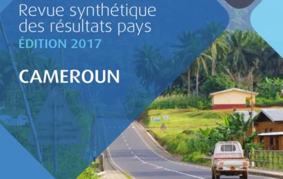 Les investissements dans le secteur public de l'énergie représentent 16,5% du portefeuille actif de la BAD au Cameroun