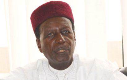 Les travaux de construction du pipeline Niger – Tchad vers le Cameroun démarreront en 2018 (officiel)
