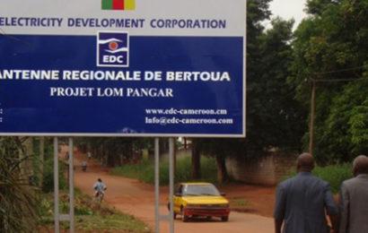 Cameroun: le gestionnaire du patrimoine public dans le secteur de l'électricité adopte un budget d'investissement de 74 millions EUR pour 2018