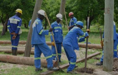 """Cameroun: ENEO a remplacé """"environ"""" 200 000 poteaux électriques en bois entre 2014 et 2017"""