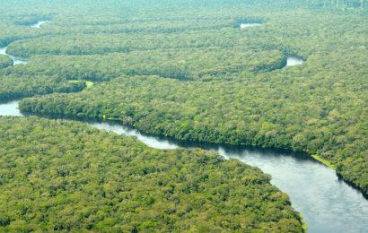 La RDC défend son droit à rechercher du pétrole sur l'étendue de son territoire…y compris dans les parcs nationaux