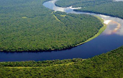 Le projet de transfert d'une partie des eaux du Congo au lac Tchad inquiète la RDC pour son barrage Grand Inga