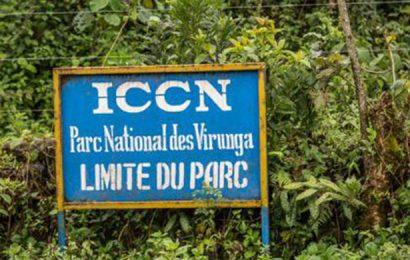 Une ONG plaide pour la non-exploitation de pétrole dans deux parcs naturels de la RDC