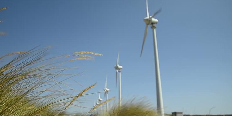 Frédéric Benedite, ancien PDG de France Eoliennes, condamné à deux ans de prison ferme pour la vente d'éoliennes domestiques défectueuses