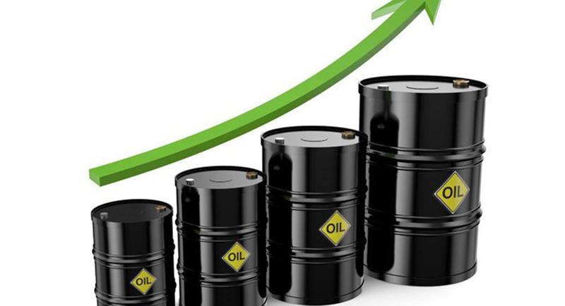 Cameroun: la loi de Finances modifiée entrevoit de meilleures recettes pétrolières en 2018 grâce à la hausse des cours