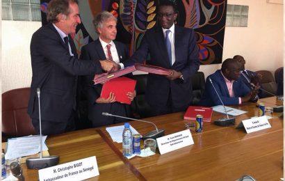 Sénégal: 52 millions d'euros de l'AFD pour le programme Smartgrid