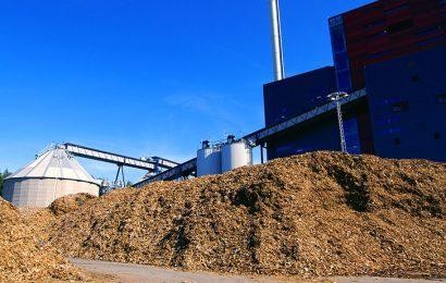 Côte d'Ivoire: la biomasse peut fournir une puissance électrique totale évaluée à 1 645 MW (CI Energies)