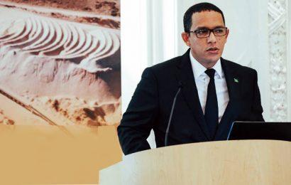 Mauritanie: le projet gazier Grand Tortue/Ahmeyim abrite un «réservoir de classe mondiale» (ministre du Pétrole)