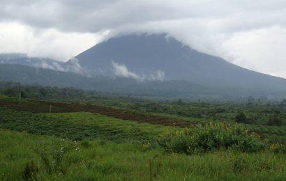 RDC: projet confirmé de «déclassement par décret d'une zone à intérêt pétrolier» dans les parcs des Virunga et de la Salonga