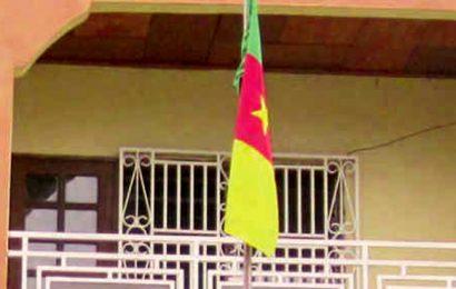 Cameroun: plus de quatre ans après l'adoption du PNEE, l'Agence de promotion et de rationalisation de l'utilisation des énergies (APRUE) toujours attendue
