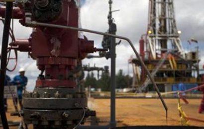 Niger: protocole d'entente entre l'Etat et Savannah Petroleum pour l'élaboration d'un plan de production de pétrole sur la partie R3 de la zone R3/R4