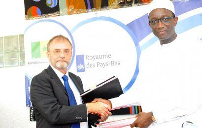 Les Pays-Bas accordent une subvention de 400 000 euros au Sénégal pour un projet d'électrification en Casamance