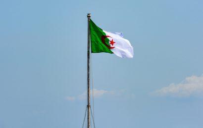 Algérie : le Conseil des ministres donne son visa au contrat de 1,2 milliard de dollars signé par Cepsa pour le champ pétrolier Rhoude el Krouf