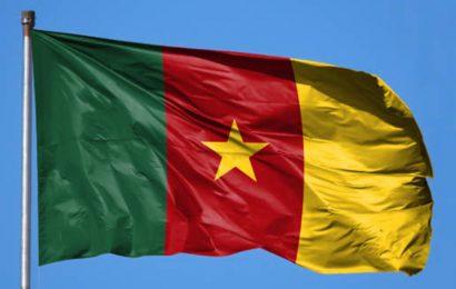 Cameroun: avis favorable du gouvernement pour la prolongation du contrat d'exploration du bloc Thali d'une année (opérateur)