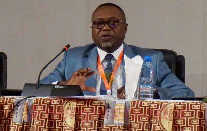 "Cameroun: Eneo recrute ""environ 225 jeunes chaque année"" (DRH)"