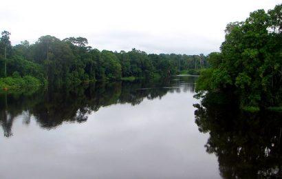 Cameroun: les audiences publiques relatives à l'impact social et environnemental du projet hydroélectrique des gorges du Ntem démarrent
