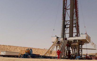 Niger: mise en place d'un système de production anticipée de pétrole dans la zone R3 début 2019 (opérateur)
