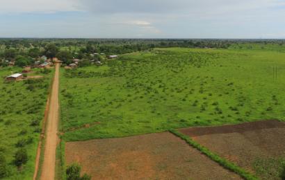 Malawi: les promoteurs de la centrale solaire de Salima (60 MW) espèrent atteindre le bouclage financier avant fin 2018