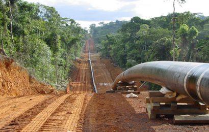 Le droit de transit du pétrole via le pipeline Tchad/Cameroun a généré 24 milliards de F CFA entre janvier et octobre 2018