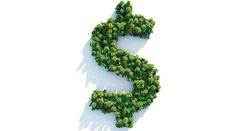 Comprendre le concept des obligations vertes à partir de l'expérience de la Banque mondiale