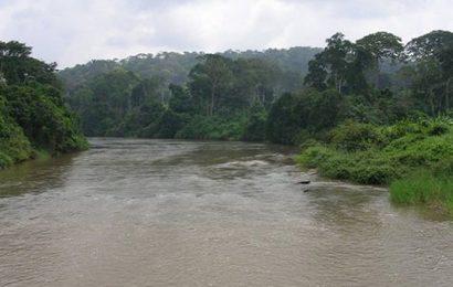"""Cameroun: """"une entité doit avoir les pouvoirs nécessaires pour gérer efficacement le bassin de la Sanaga"""" (expert)"""