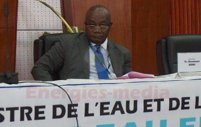 Cameroun: le projet Memve'ele II permettra d'exploiter 600 MW de puissance additionnelle dans les gorges du fleuve Ntem (directeur du projet)