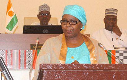 Niger : près de 332 milliards de F CFA mobilisés pour «l'électrification du monde rural» (ministre de l'Energie)