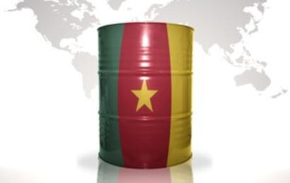Cameroun: la loi de finances promulguée table sur des revenus du secteur pétrolier de l'ordre de 468 milliards de F CFA en 2020