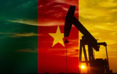Cameroun: en 2018, l'Etat a encaissé 529,8 milliards de FCFA provenant du secteur pétrolier