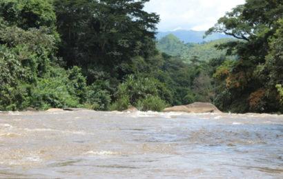 """Cameroun: la situation sécuritaire dans le Nord-Ouest """"entrave"""" la réalisation des barrages de Menchum et de la Katsina Ala (Minee)"""