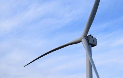 Sénégal: le parc éolien Taïba N'Diaye tournera à plein régime en mai 2020 (développeur)