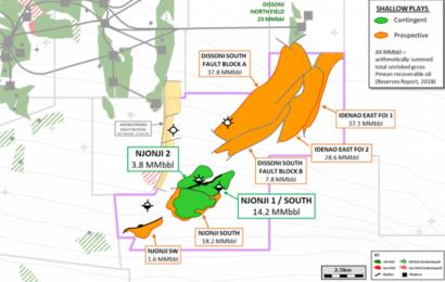 Cameroun: ce que dit le rapport 2020 des réserves du bloc Thali