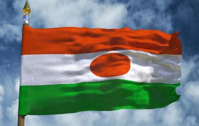 Niger: le gouvernement organise l'Agence nationale de l'énergie solaire