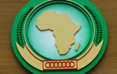 L'Union africaine et l'Irena en partenariat pour le développement des énergies renouvelables sur le continent