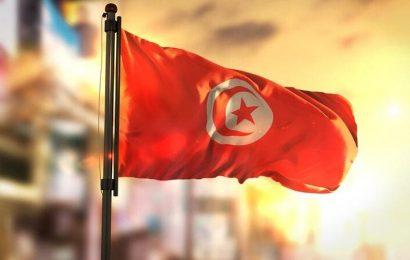 Tunisie: les investissements dans l'énergie ont représenté 41,2% des IDE entre janvier et sept. 2020