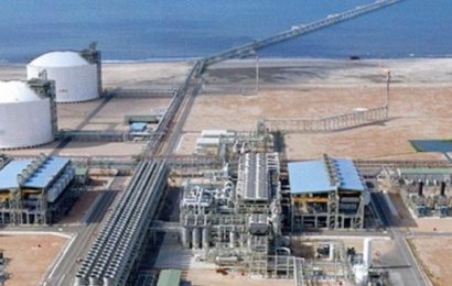 Egypte: la réouverture de l'usine de liquéfaction de gaz naturel de Damiette programmée au premier trimestre 2021