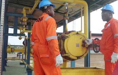 Cameroun: la Société Nationale des Hydrocarbures félicitée pour sa résilience