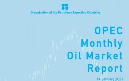 La production de pétrole des pays membres de l'Opep a progressé de 278 000 barils par jour en décembre 2020