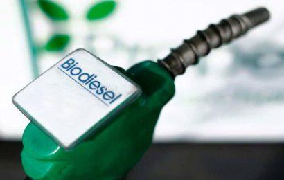 Eni va accompagner le Kenya dans le développement de biocarburants