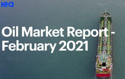 La reprise de la demande mondiale de pétrole à court terme encore délicate (AIE)
