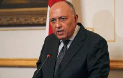 L'Egypte plaide auprès de l'Afrique du Sud et d'autres pays africains pour arriver à une solution sur le GERD