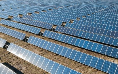 Globeleq et le Sud-africain Sturdee Energy remportent les appels d'offres de 30 MW de centrales solaires en Eswatini