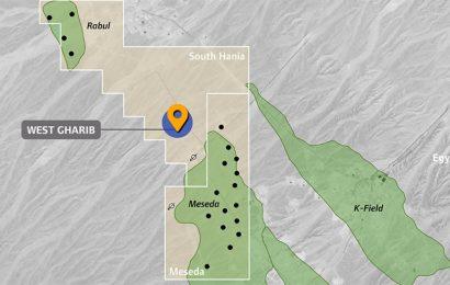 Egypte: des forages débuteront dans les concessions West Gharib et South Disouq en juin (SDX)