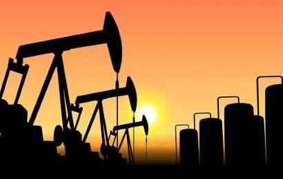 L'Opep veut faire front commun avec l'Afrique pour défendre l'exploitation du pétrole et du gaz à la COP26