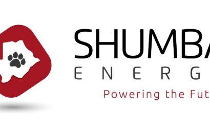 Botswana : les pouvoirs publics autorisent Shumba Energy à développer une centrale solaire de 100 MW près de Francistown