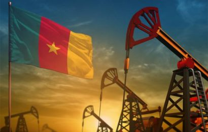 Cameroun: les statistiques des réserves pétrolières et gazières sur les sites en exploitation à fin 2020